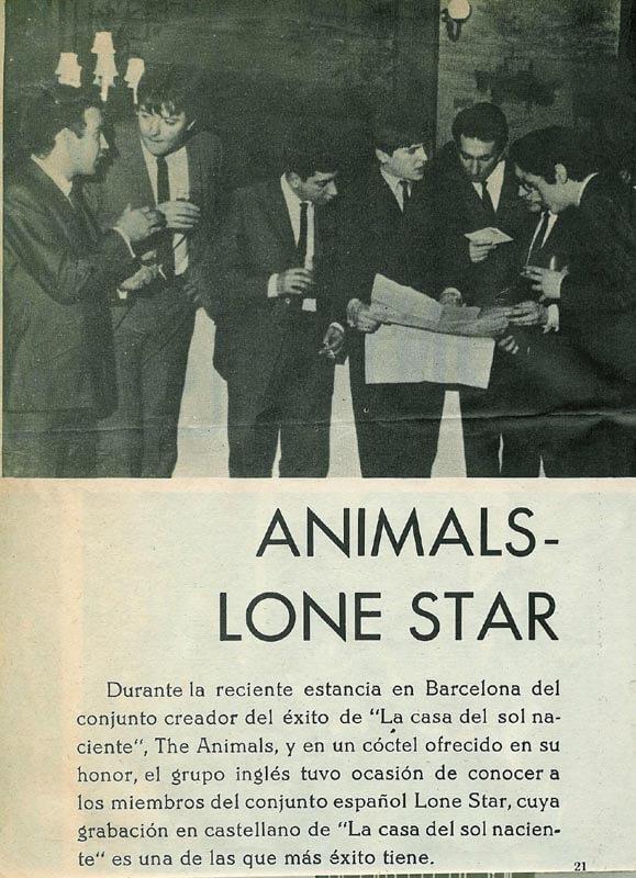 02-animals